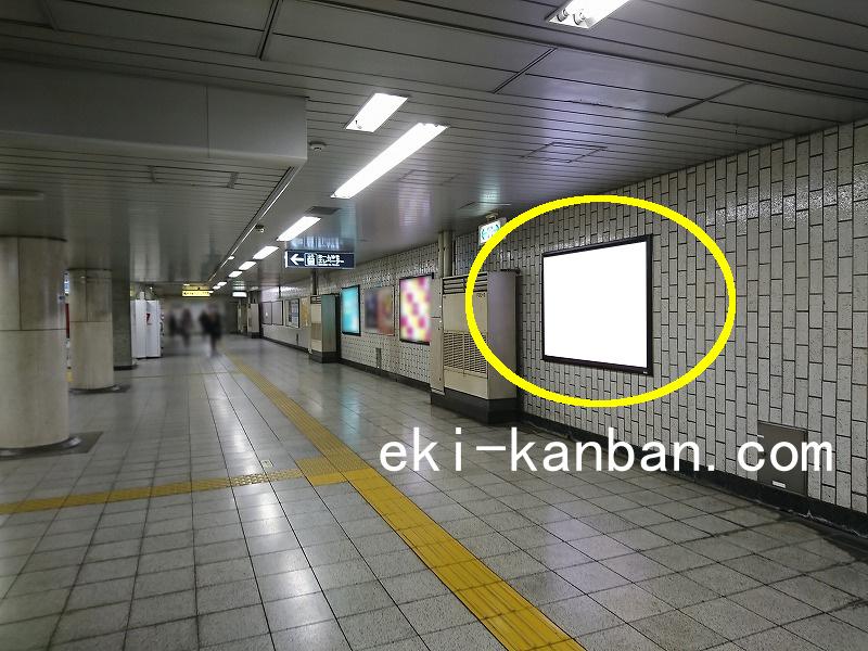 東京メトロ 護国寺駅 有楽町線№17駅看板・駅広告、写真1